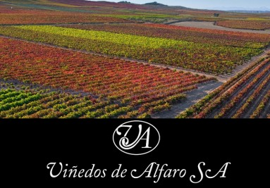 Viñedos Alfaro